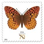 StampsButterfly
